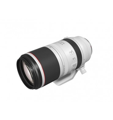 CANON RF 100-500mm F4.57.1 L IS USM